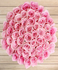 pink Bunches - Congratulations roses