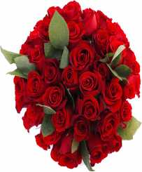 Love Symbol Roses - Birthday Flowers