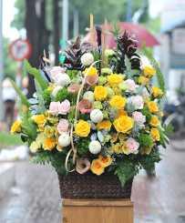 Sapphire Skies - Congratulations Flowers