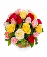 Peaceful  - Congratulations Flowers