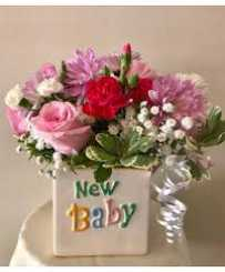 Lovely - New Born